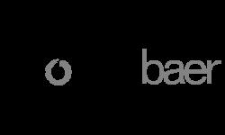 logo moserbaer